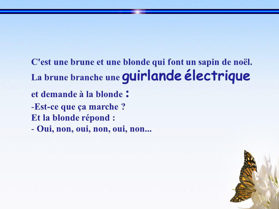 C'est une brune et une blonde qui font un sapin de noël. La brune branche une guirlande électrique et demande à la blonde : -Est-ce que ça marche ? Et