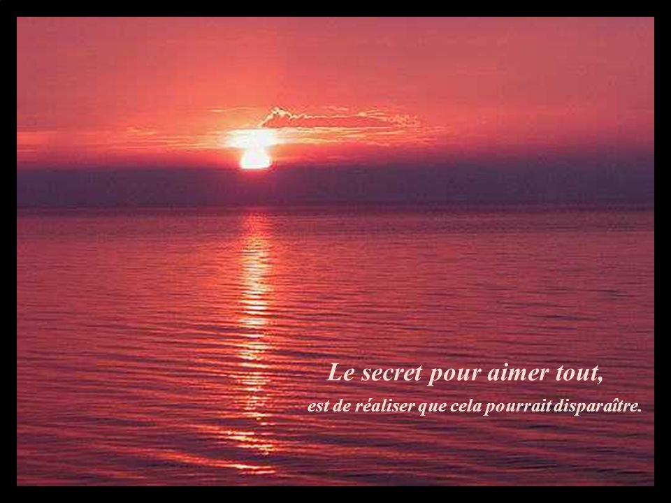 Le secret pour aimer tout, est de réaliser que cela pourrait disparaître.