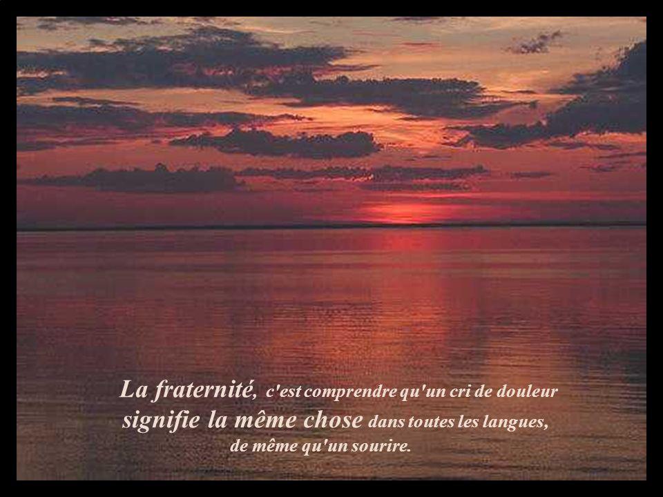 La fraternité, c'est comprendre qu'un cri de douleur signifie la même chose dans toutes les langues, de même qu'un sourire.