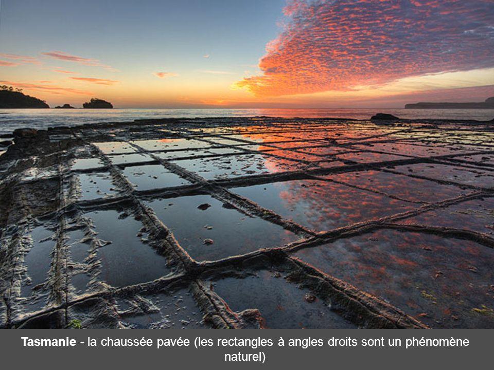 Tasmanie - la chaussée pavée (les rectangles à angles droits sont un phénomène naturel)