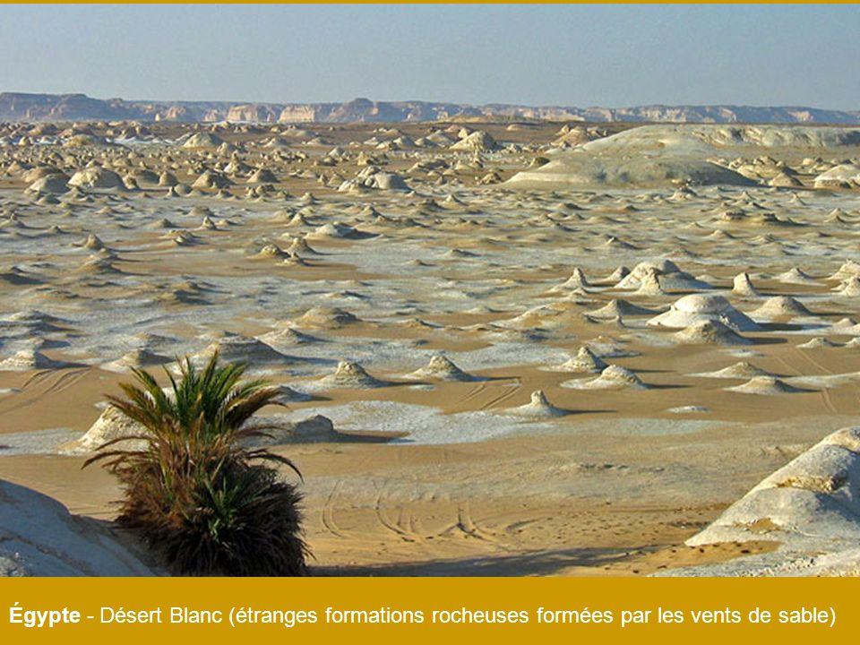 Égypte - Désert Blanc (étranges formations rocheuses formées par les vents de sable)
