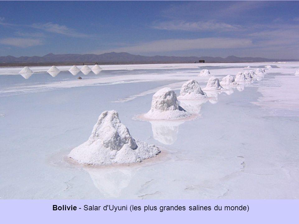 Bolivie - Salar d Uyuni (les plus grandes salines du monde)
