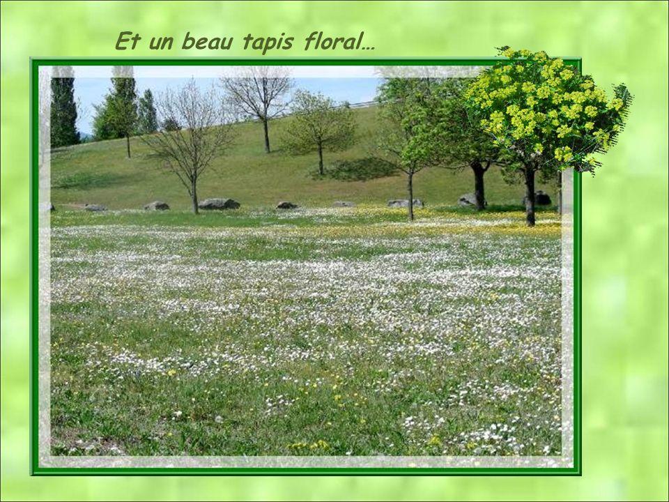 Et un beau tapis floral…