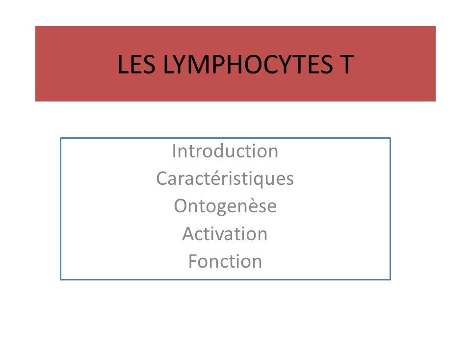 LES LYMPHOCYTES T Introduction Caractéristiques Ontogenèse Activation Fonction
