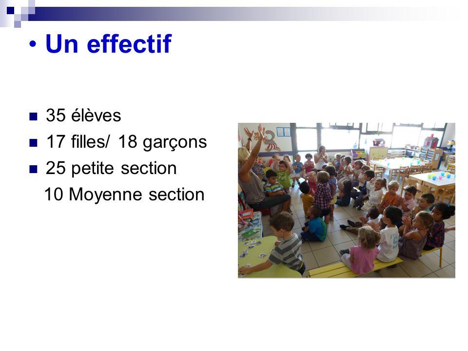 Un effectif 35 élèves 17 filles/ 18 garçons 25 petite section 10 Moyenne section