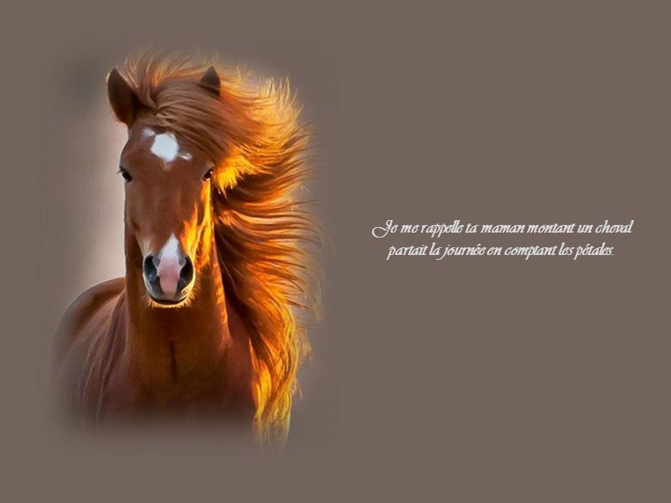 Je me rappelle ta maman montant un cheval partait la journée en comptant les pétales.