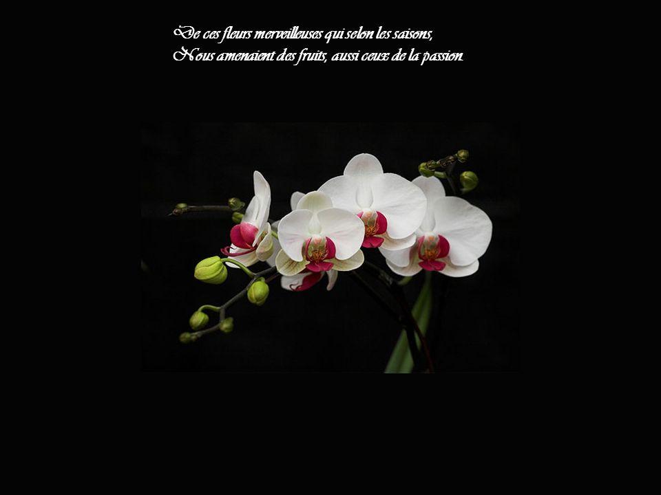 De ces fleurs merveilleuses qui selon les saisons, Nous amenaient des fruits, aussi ceux de la passion.