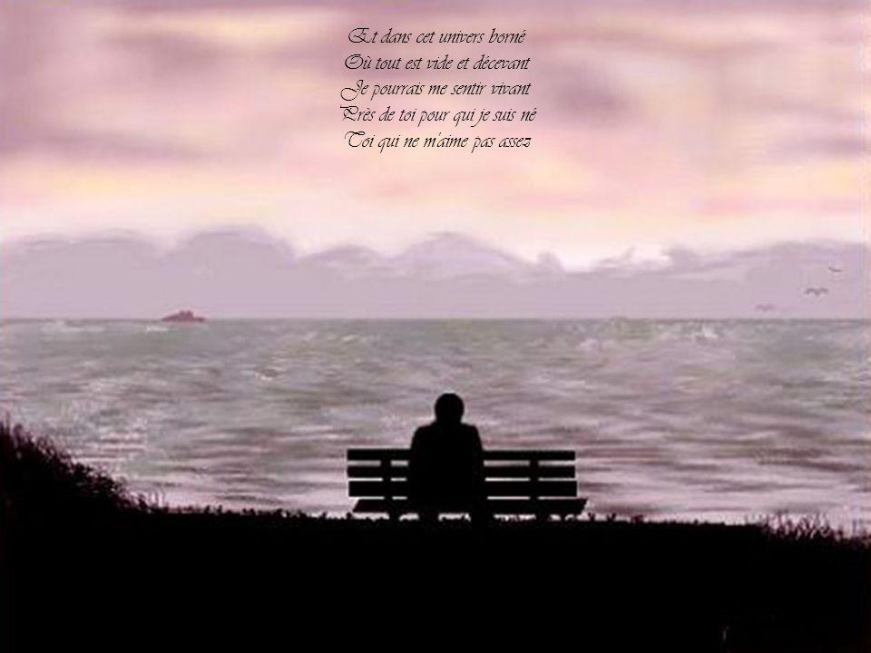 Je voudrais tant que tu sois là Pour partager la chambre close Où mon avenir se repose En attendant que tu sois là