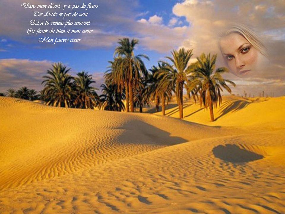 Dans mon désert y a pas de fleurs Pas d oasis et pas de vent Et si tu venais plus souvent Ça ferait du bien à mon cœur Mon pauvre cœur