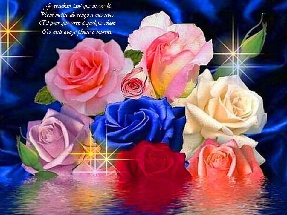 Je voudrais tant que tu sois là Pour mettre du rouge à mes roses Et pour que serve à quelque chose Ces mots que je pleure à mi-voix