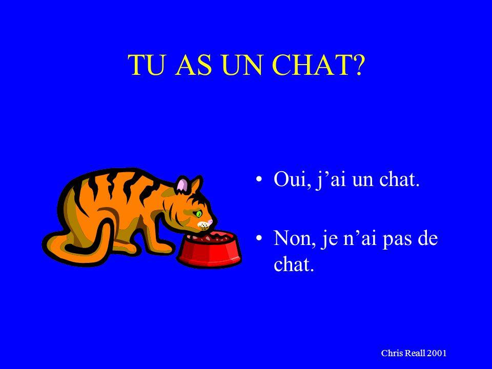 Chris Reall 2001 TU AS UN CHAT? Oui, jai un chat. Non, je nai pas de chat.