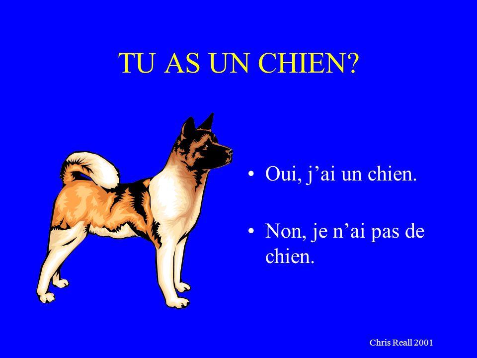 Chris Reall 2001 TU AS UN CHIEN? Oui, jai un chien. Non, je nai pas de chien.