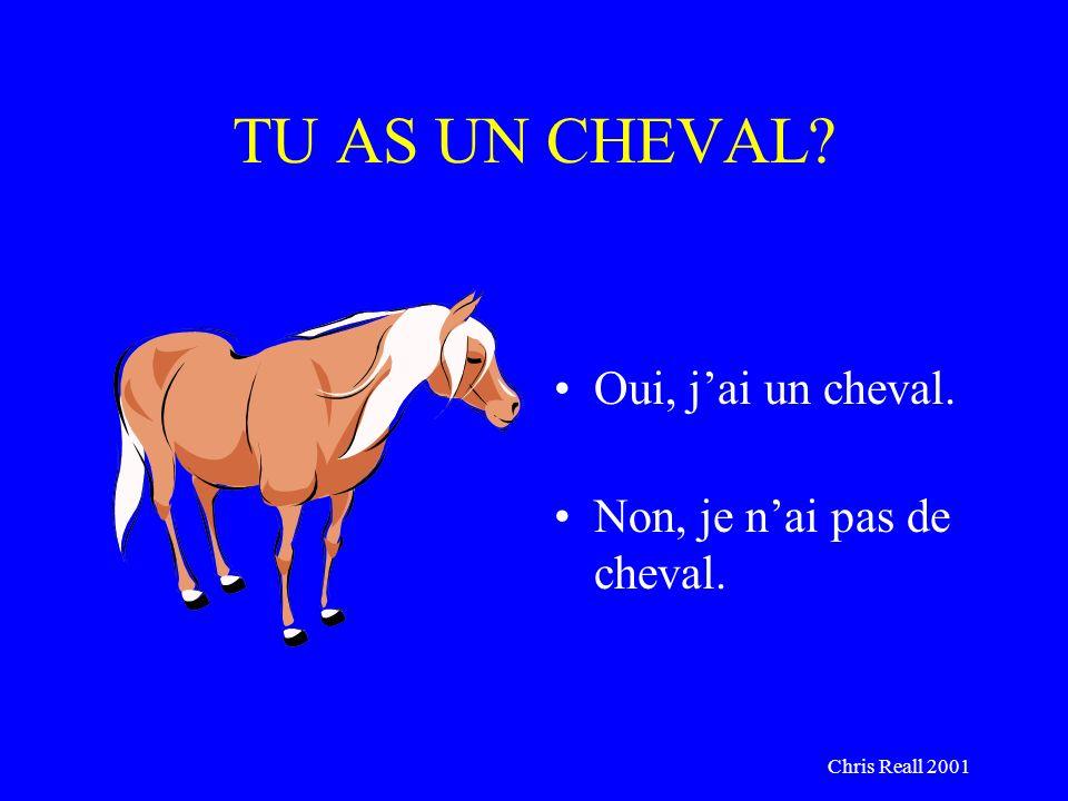 Chris Reall 2001 TU AS UN CHEVAL? Oui, jai un cheval. Non, je nai pas de cheval.