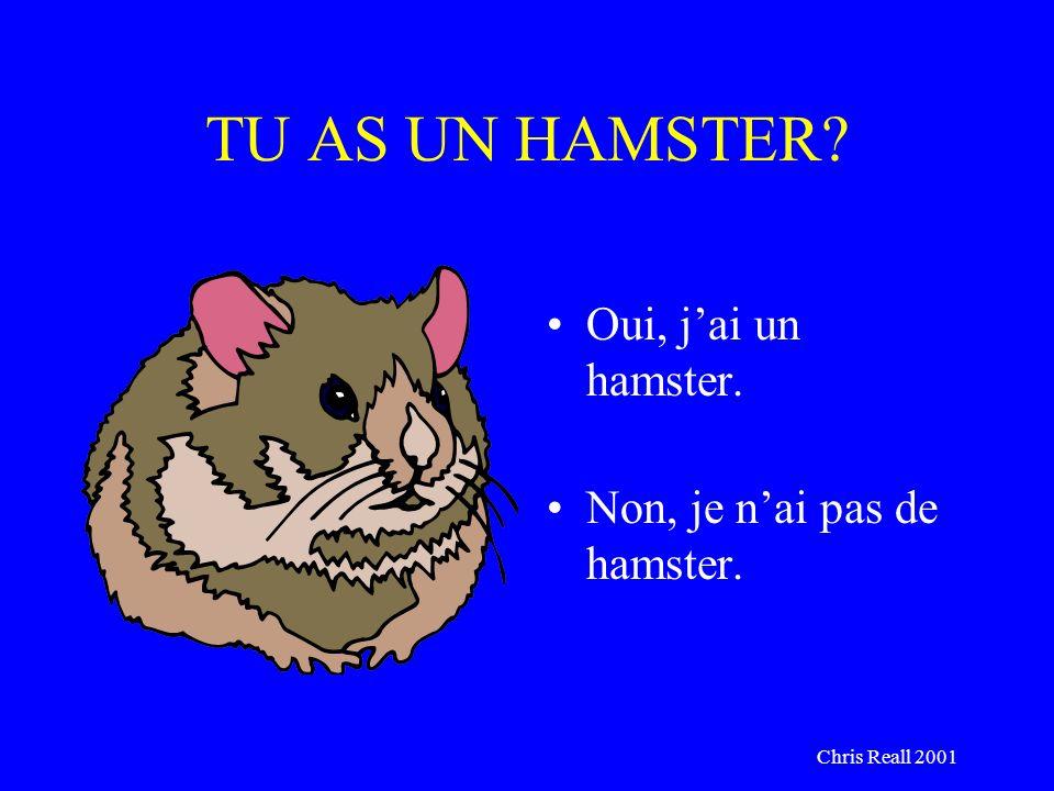Chris Reall 2001 TU AS UN HAMSTER? Oui, jai un hamster. Non, je nai pas de hamster.