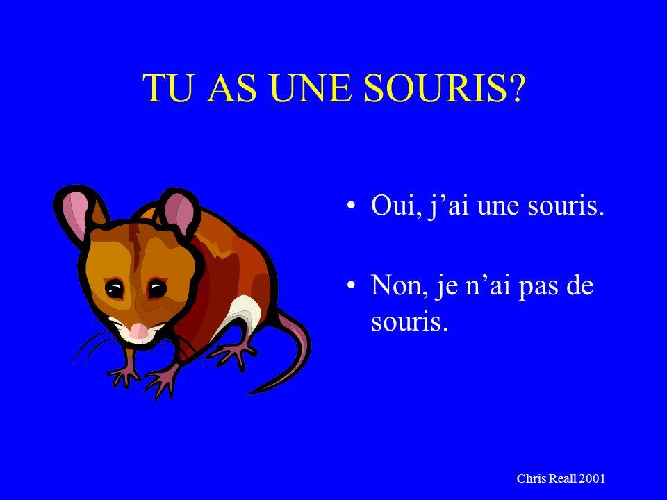 Chris Reall 2001 TU AS UNE SOURIS? Oui, jai une souris. Non, je nai pas de souris.