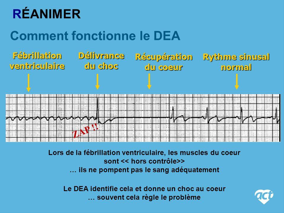Comment fonctionne le DEA Lors de la fébrillation ventriculaire, les muscles du coeur sont > … ils ne pompent pas le sang adéquatement Le DEA identifie cela et donne un choc au coeur … souvent cela règle le problème Fébrillation ventriculaire Délivrance du choc Récupération du coeur Rythme sinusal normal ZAP !.