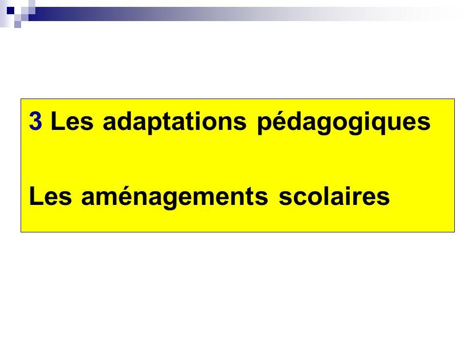 3 Les adaptations pédagogiques Les aménagements scolaires