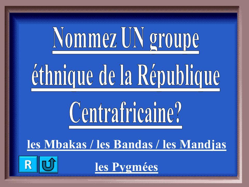 le Cameroun / le Tchad / le Soudan la Rép. dém. du Congo RRRR