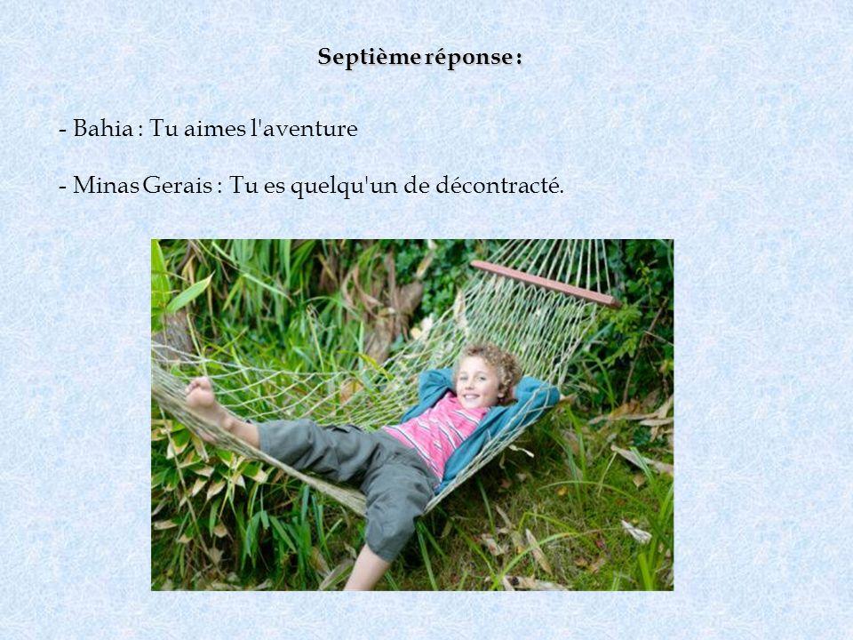 Septième réponse : - Bahia : Tu aimes l'aventure - Minas Gerais : Tu es quelqu'un de décontracté.
