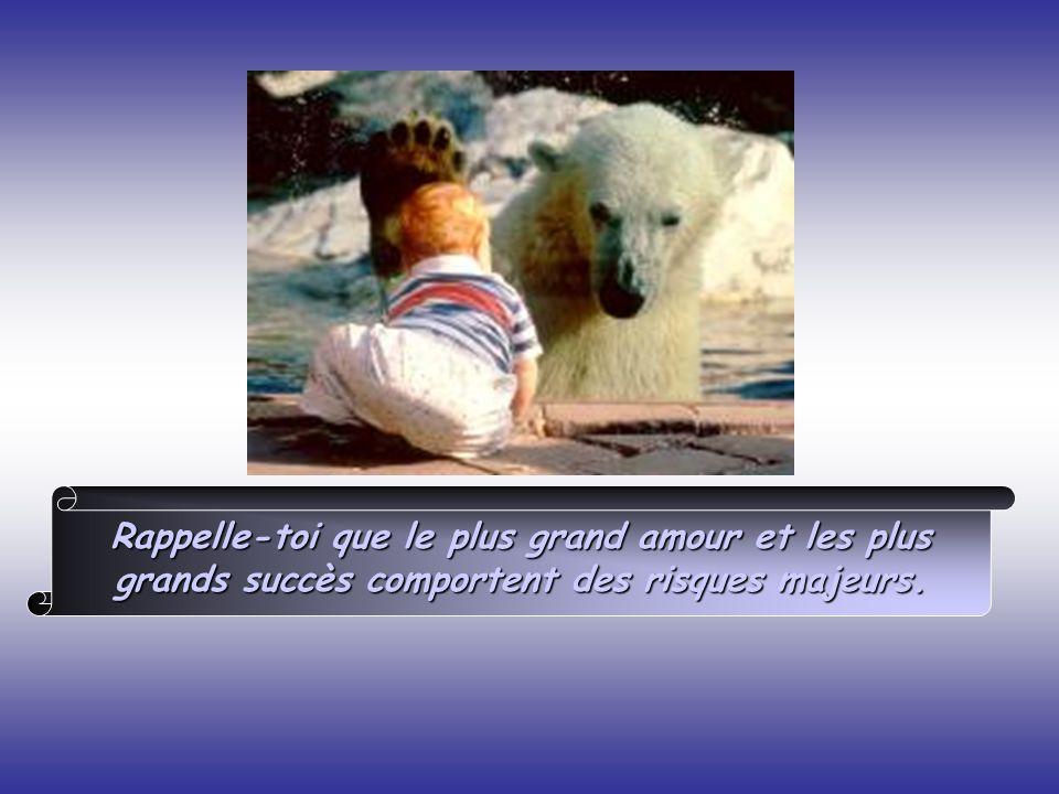 Rappelle-toi que le plus grand amour et les plus grands succès comportent des risques majeurs.