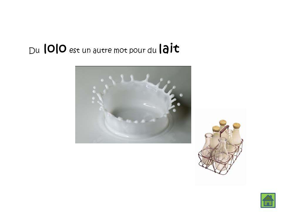 Du lolo est un autre mot pour du lait