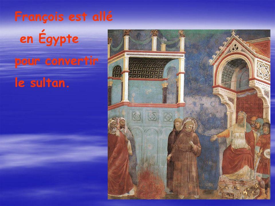 François est allé en Égypte pour convertir le sultan.