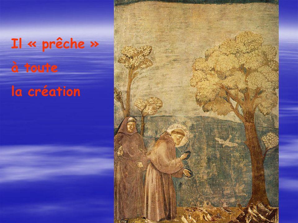 Il « prêche » à toute la création