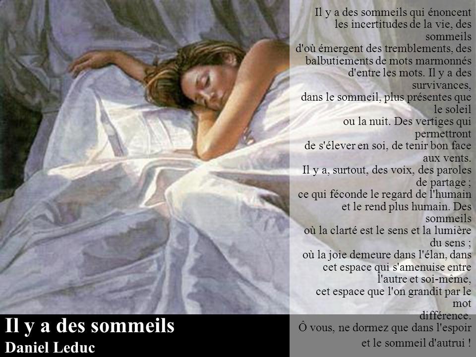 Bonsoir Renée Laurentine Bonsoir, bonsoir !... et que tes rêves soient brodés de lune picotés de lucioles ombrés de fleurs sauvages. Bonsoir, bonsoir