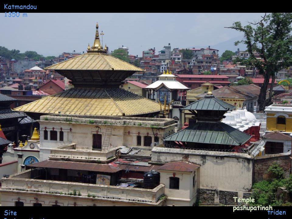 Katmandou 1350 m Site Pashupatinath Intérieur du Temple pashupatinah taurea u
