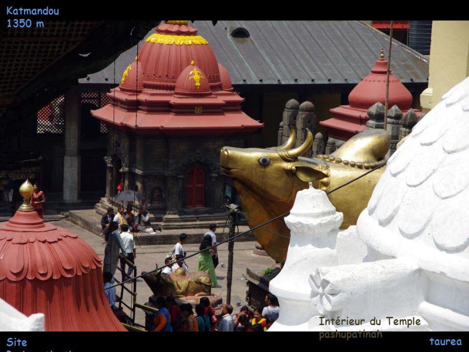 Katmandou 1350 m Site Pashupatinath Entrée du Temple pashupatinah