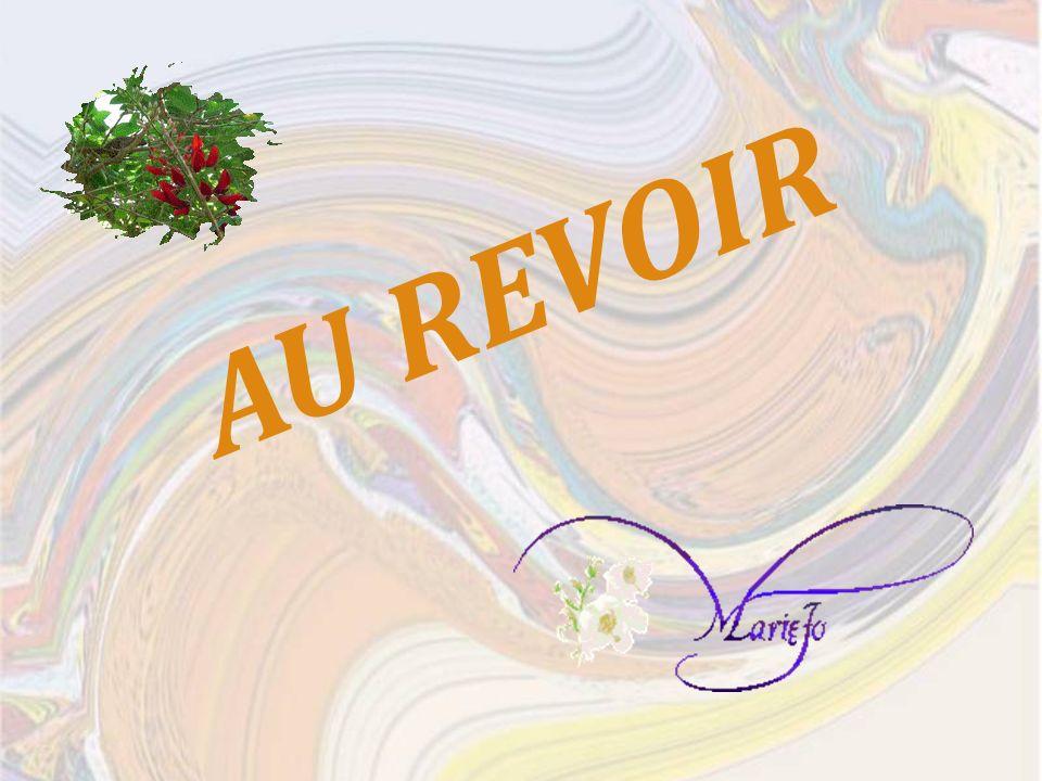 Musique : Jean-Michel Jarre Les champs Magnétiques IV Photos, conception et réalisation : Marie-Josèphe Farizy-Chaussé Avril 2009 marijo855@gmail.com