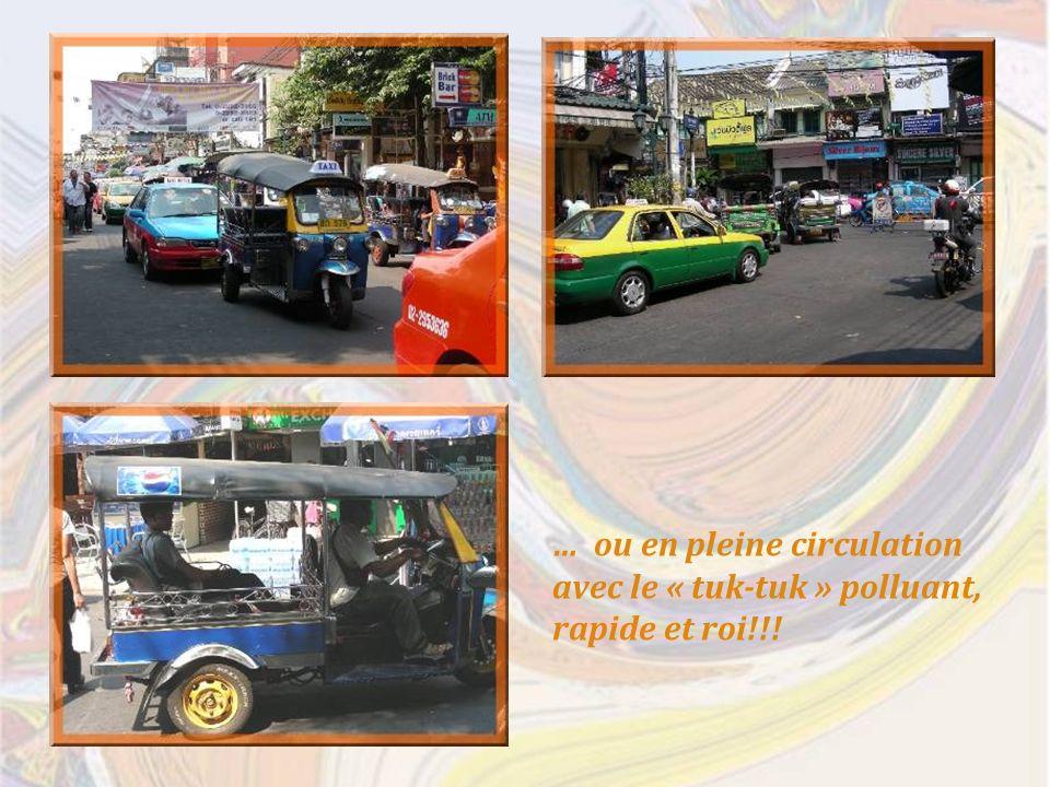 … ou en pleine circulation avec le « tuk-tuk » polluant, rapide et roi!!!