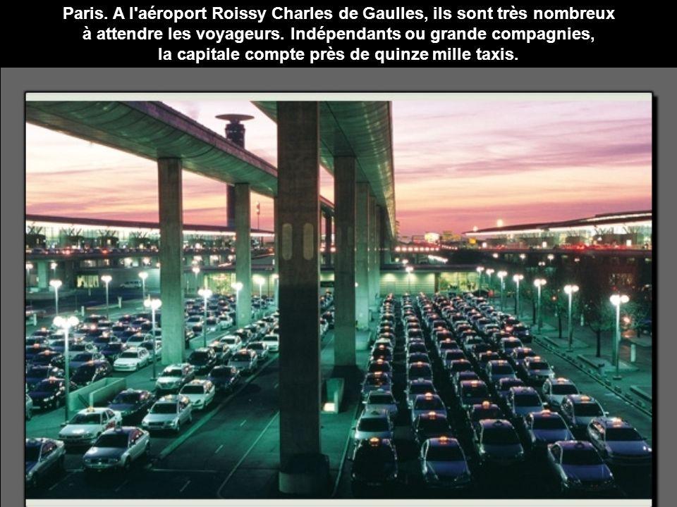 Paris. A l'aéroport Roissy Charles de Gaulles, ils sont très nombreux à attendre les voyageurs. Indépendants ou grande compagnies, la capitale compte