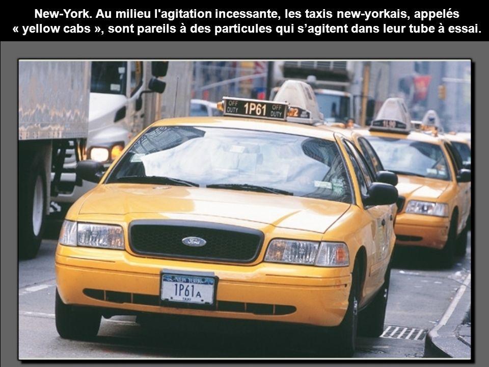 New-York. Au milieu l'agitation incessante, les taxis new-yorkais, appelés « yellow cabs », sont pareils à des particules qui sagitent dans leur tube