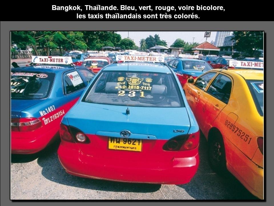 Bangkok, Thaïlande. Bleu, vert, rouge, voire bicolore, les taxis thaïlandais sont très colorés.