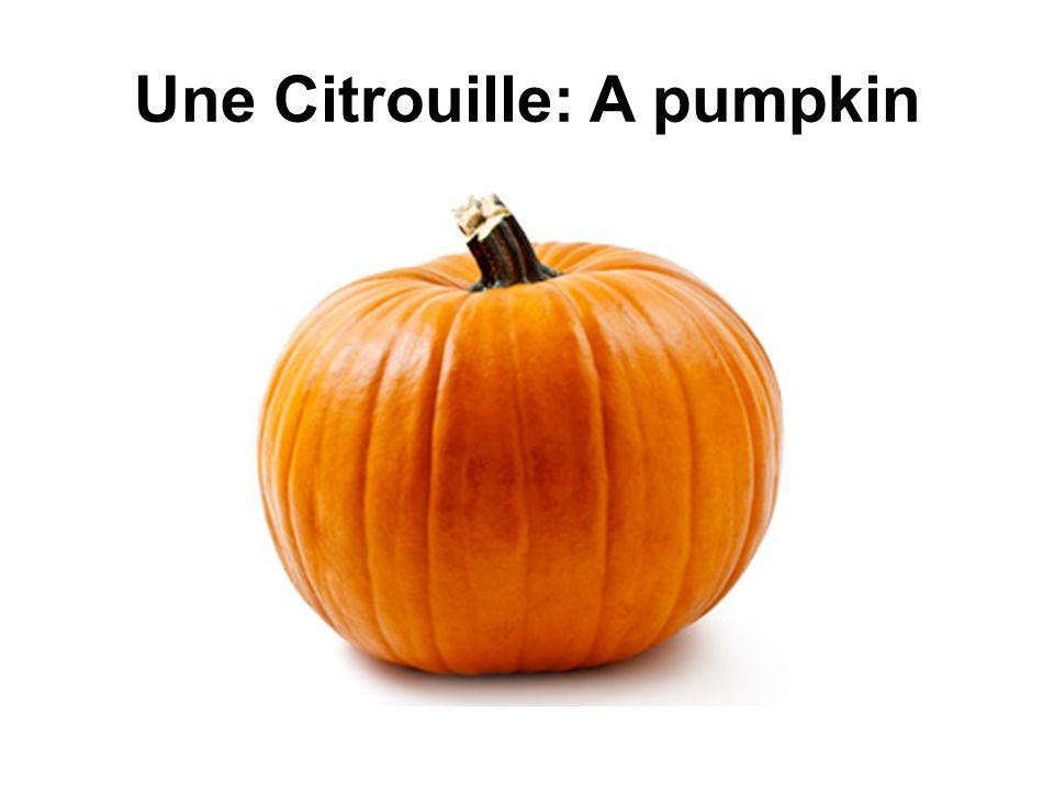 Une Citrouille: A pumpkin