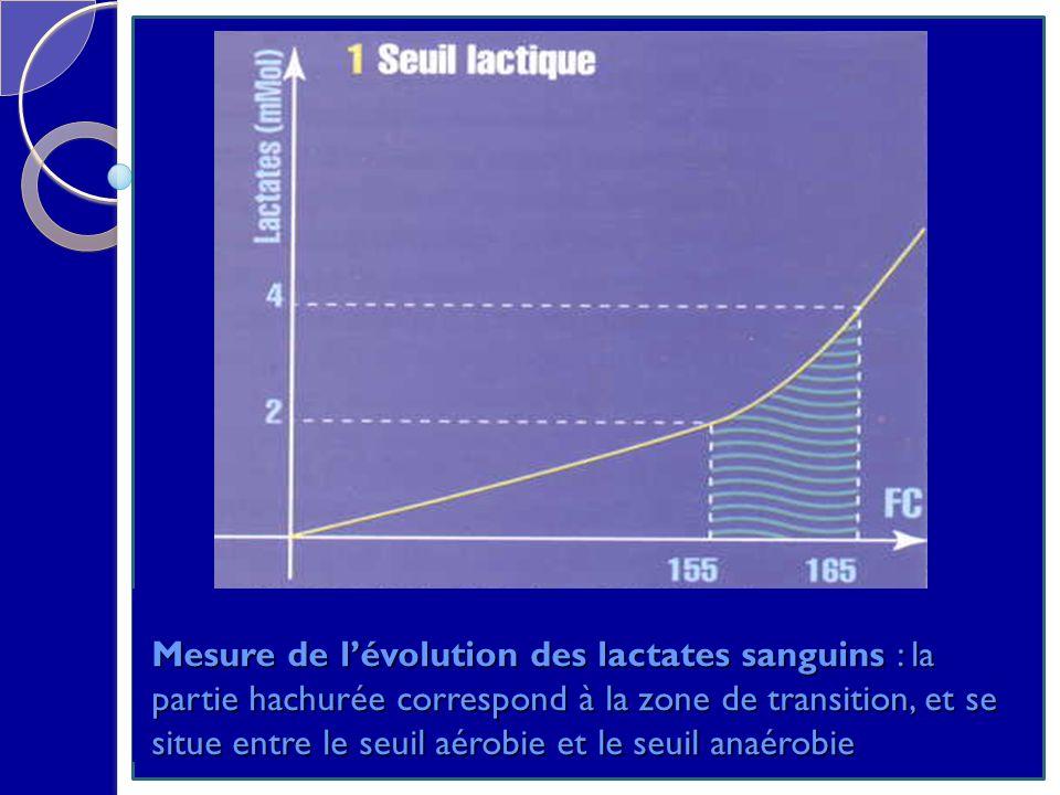Mesure de lévolution des lactates sanguins : la partie hachurée correspond à la zone de transition, et se situe entre le seuil aérobie et le seuil ana