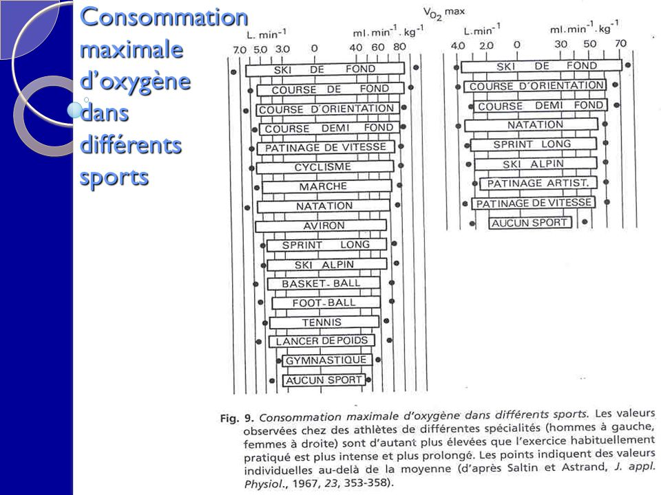 Consommation maximale doxygène dans différents sports