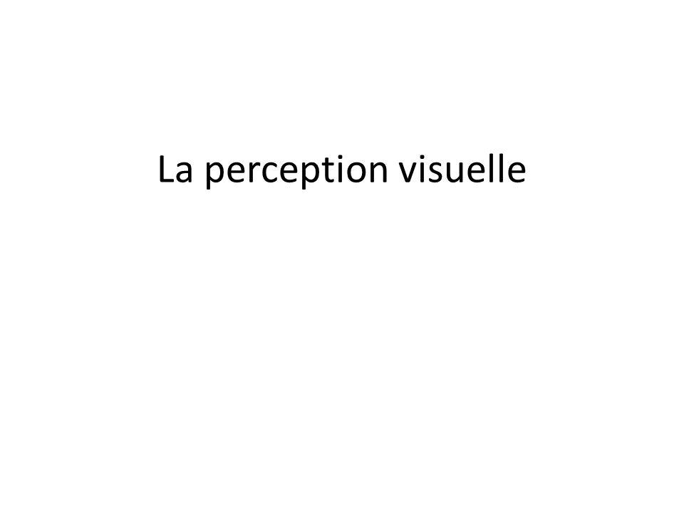 Pourquoi étudier la perception.
