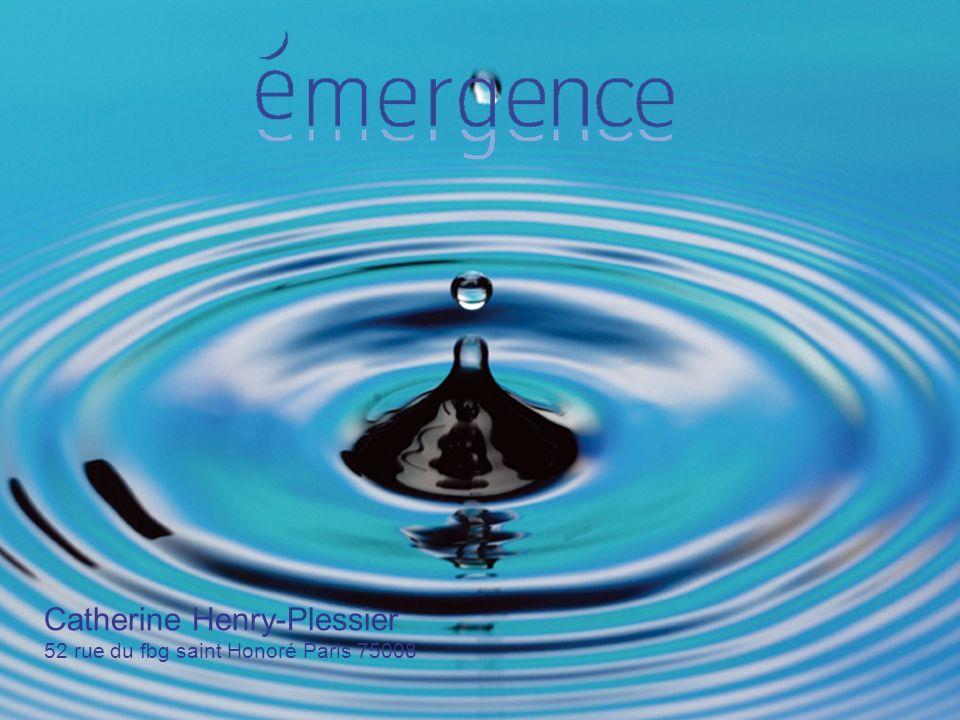 2 2009 Bonjour et Bienvenue «De lintelligence émotionnelle, à lintelligence globale »