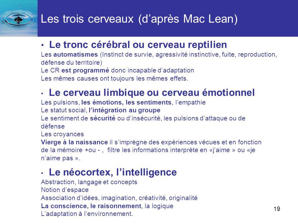19 Les trois cerveaux (daprès Mac Lean) Le tronc cérébral ou cerveau reptilien Les automatismes (Instinct de survie, agressivité instinctive, fuite, r