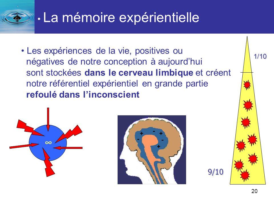 20 Les expériences de la vie, positives ou négatives de notre conception à aujourdhui sont stockées dans le cerveau limbique et créent notre référenti