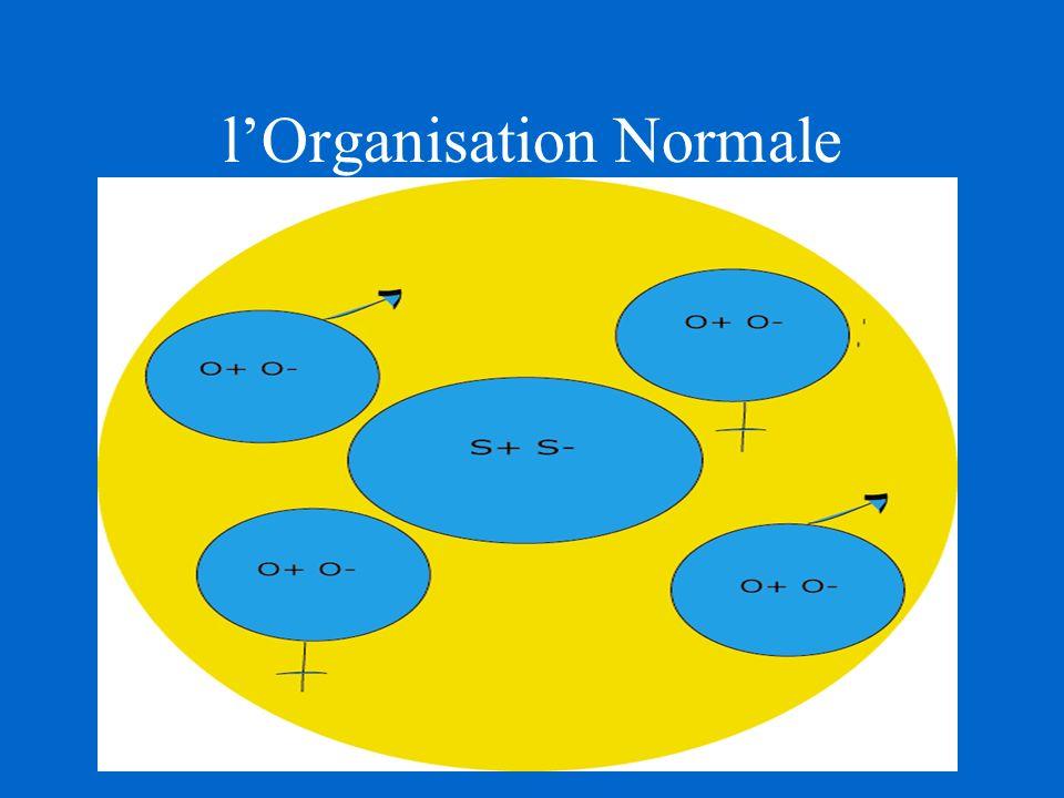 lOrganisation Normale