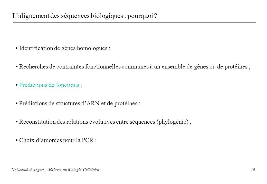 10 Lalignement des séquences biologiques : pourquoi ? Identification de gènes homologues ; Recherches de contraintes fonctionnelles communes à un ense