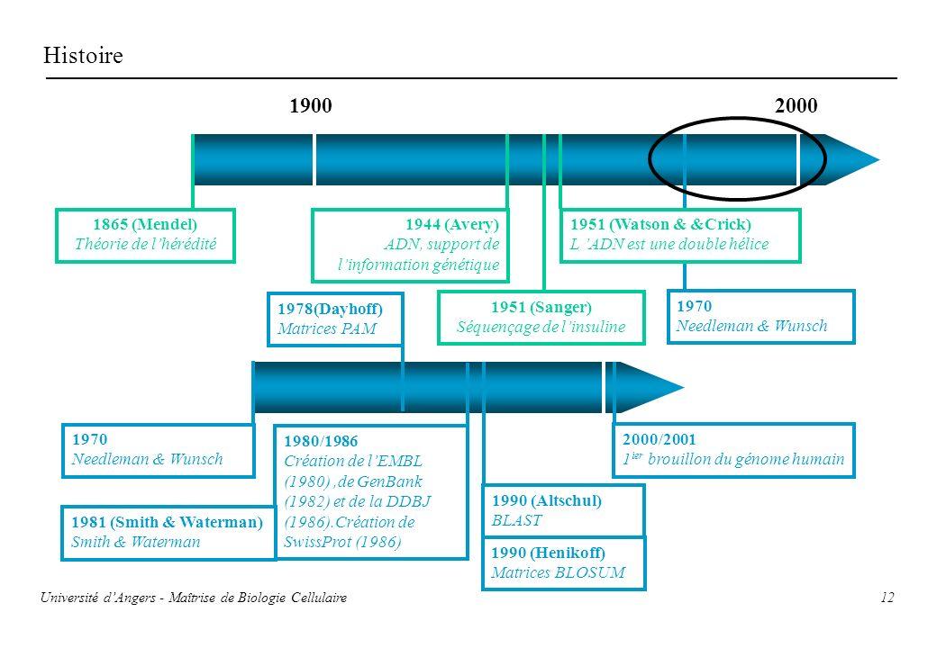 12 Histoire 1900 2000 1865 (Mendel) Théorie de lhérédité 1944 (Avery) ADN, support de linformation génétique 1951 (Sanger) Séquençage de linsuline 195
