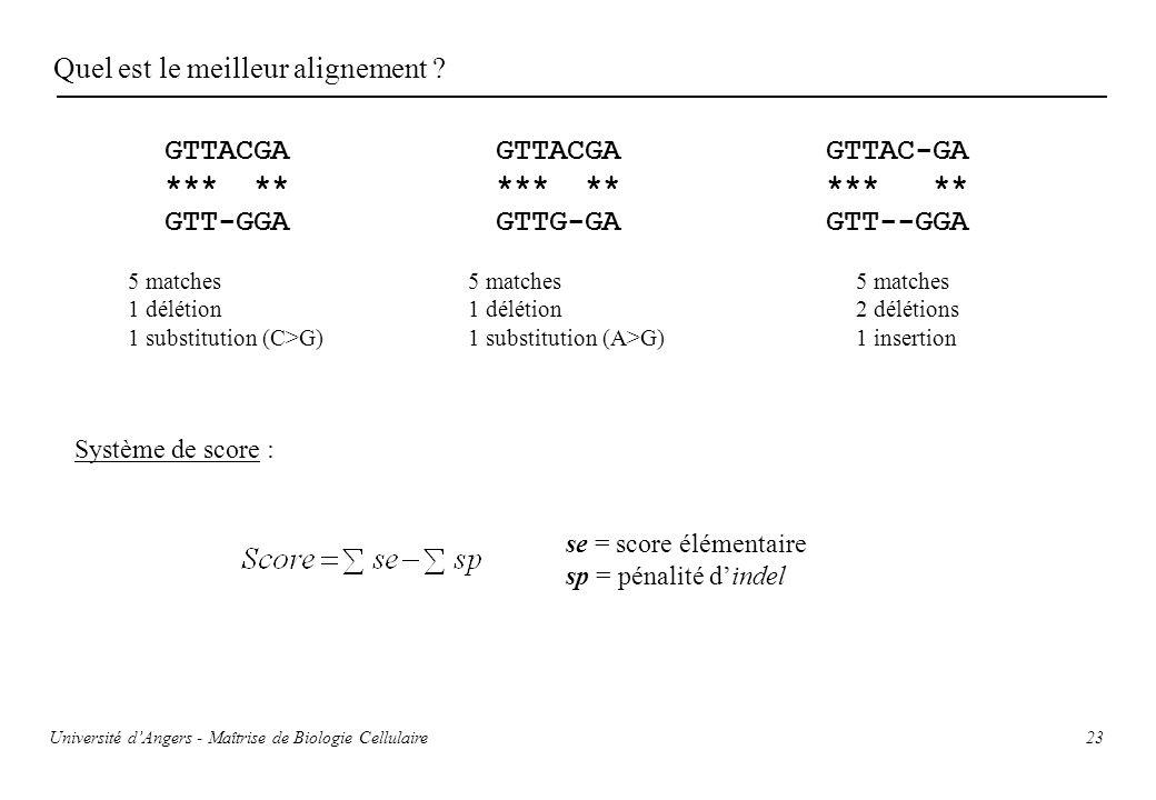 23 Quel est le meilleur alignement ? GTTACGA *** ** GTT-GGA GTTAC-GA *** ** GTT--GGA GTTACGA *** ** GTTG-GA 5 matches 1 délétion 1 substitution (C>G)