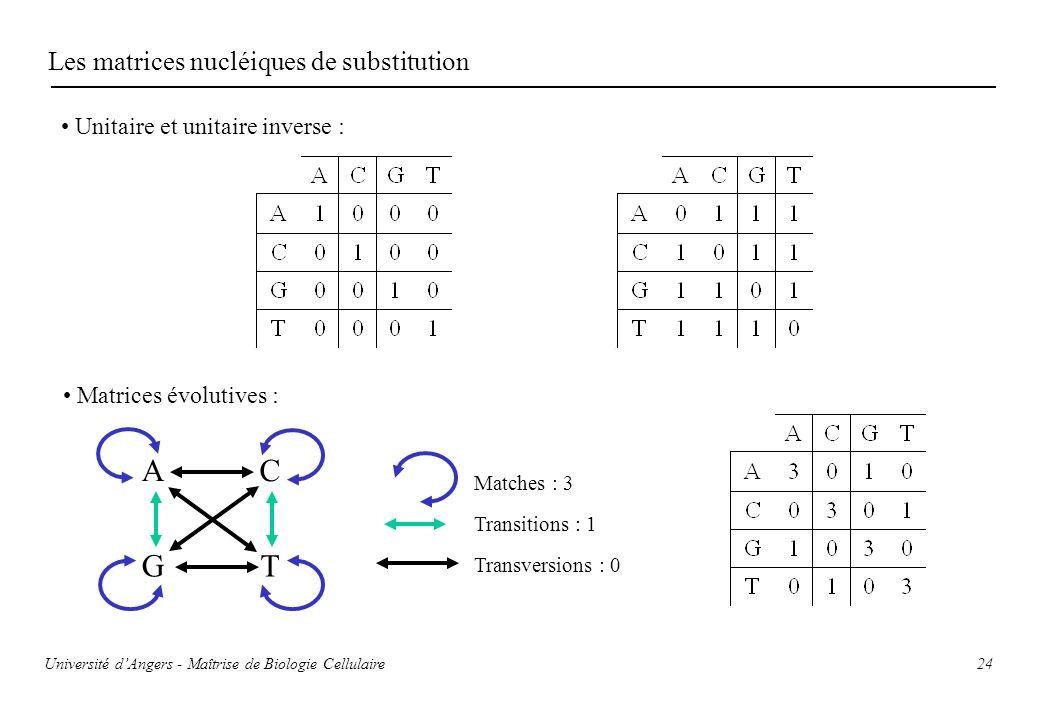 24 Les matrices nucléiques de substitution Unitaire et unitaire inverse : Matrices évolutives : Transitions : 1 Transversions : 0 Matches : 3 A TG C U