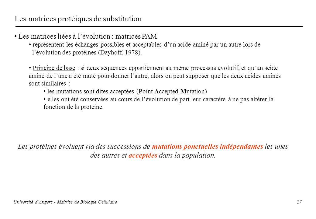 27 Les matrices protéiques de substitution Les matrices liées à lévolution : matrices PAM représentent les échanges possibles et acceptables dun acide