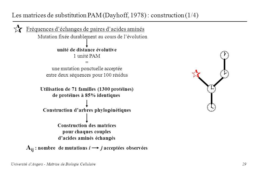 29 Les matrices de substitution PAM (Dayhoff, 1978) : construction (1/4) Fréquences déchanges de paires dacides aminés Mutation fixée durablement au c