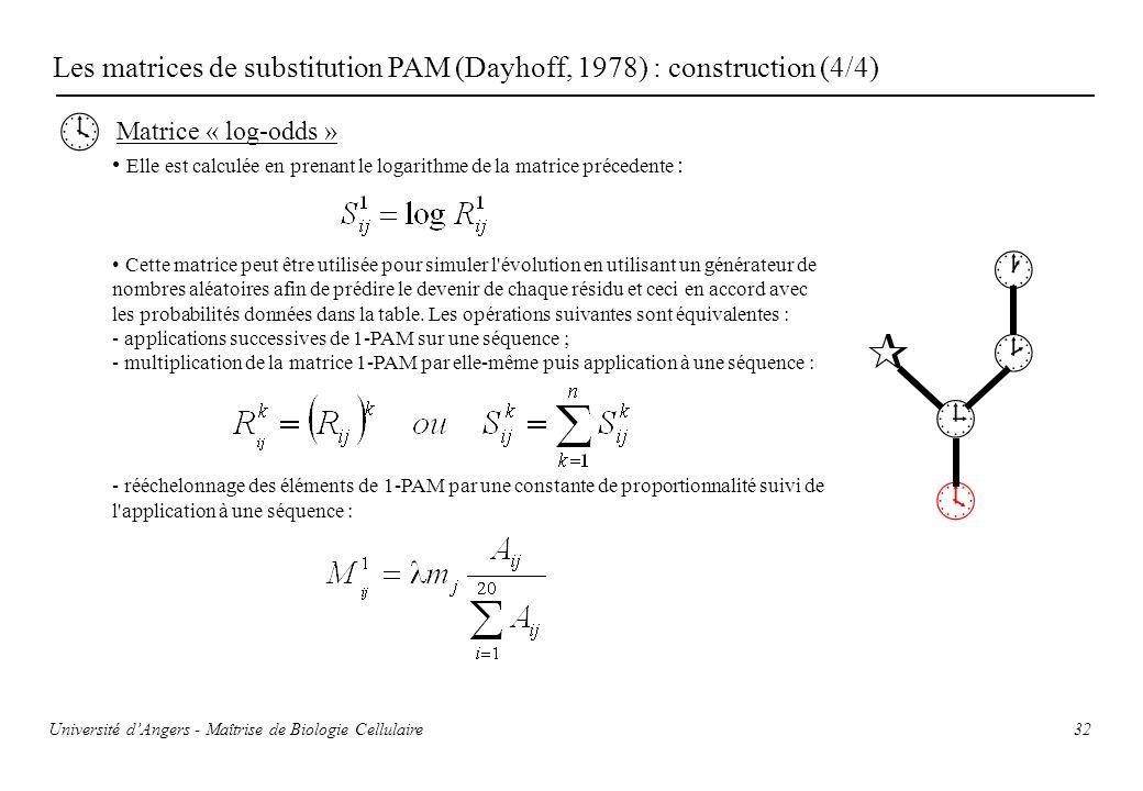 32 Les matrices de substitution PAM (Dayhoff, 1978) : construction (4/4) Matrice « log-odds » Elle est calculée en prenant le logarithme de la matrice